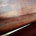 Mesa con agujeros de carcoma