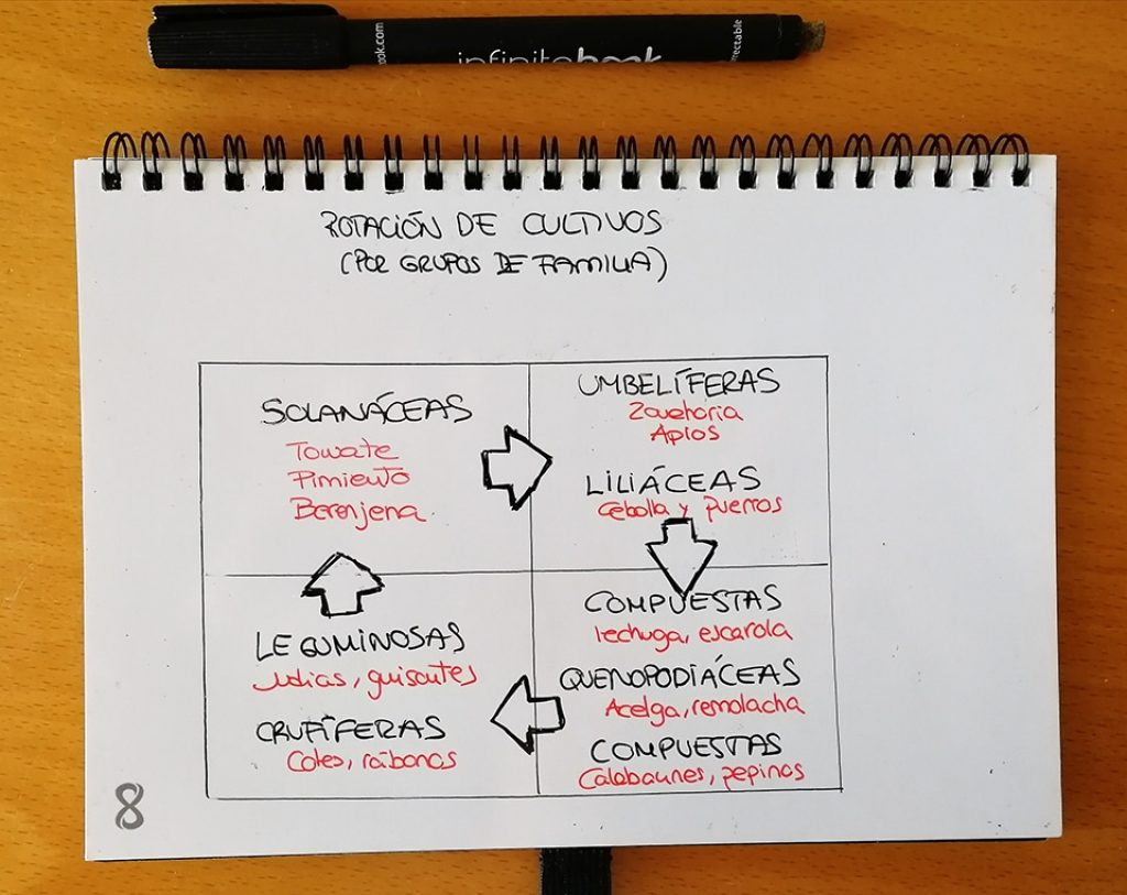 esquema donde se muestra como rotar los cultivos por grupos de familia